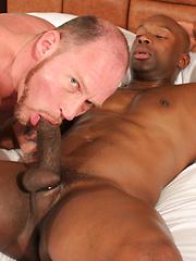 Fantastic interracial gay scene