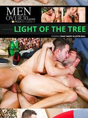 Men Over 30 - Light Of The Tree